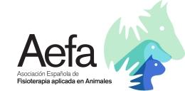 AEFA_logo