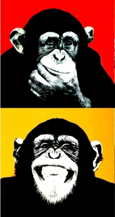 SELFLESSLY-Andy-Warhol-Colorful-Monkey-Animal-Poster-Print-Canvas-Paintings-For-Living-R2oom-Wall-Art-Cuadros.jpg_q50